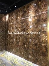 Fossil Stone Petrified Wood Wall Semiprecious