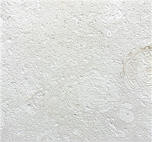 Shell Reef Limestone Brushed Tiles