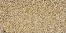 Coral Stone Beige Color
