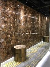 Petrified Wood Semiprecious Stone Slabs