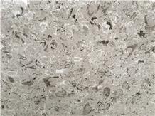 Aurisina Lumachella Limestone Slabs & Tiles