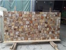 Natural Fossil Petrified Wood Slab Luxury Slab