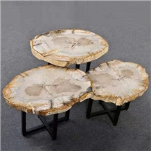 Natural Petrified Wood Stone Table Tops