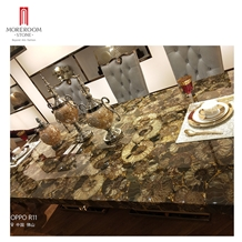 Nautilus Fossil Stone Furniture Royal Dining Table