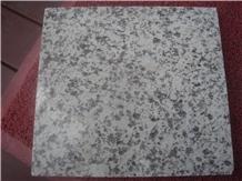 Granite Venus White for Tiles and Slabs