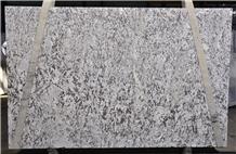 Bianco Antico Granite Slabs