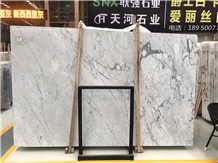 Bianco Statuario Caldia Marble Slab Hotle Floor Stepping
