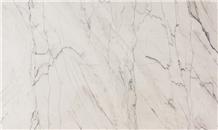 Calacatta Supreme Quartzite Slabs