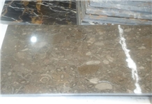 Sea Life Grey Fossil Brown - Double Polished