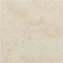 Seashell Limestone Tiles & Slabs, Beige Limestone