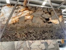 Patagonia Exotic Transmitting Gold Brown Quartzite