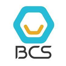 BCS MINES