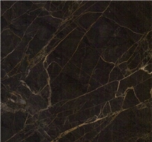 China Dior Gold Marble Slab Tile Brown Floor Wall