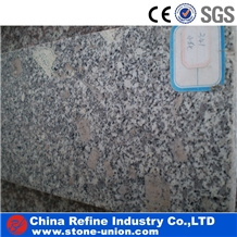 G341 Small Grains and Veins Pattern Tiles & Slabs