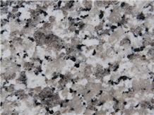 Granito Grigio Perla Granite, Bianco Sardo Lucido Granite Tiles & Slabs