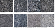 Superior Northern Granite Tiles
