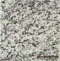 Buy Gris Parga Granite Tiles