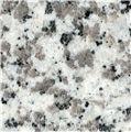 Buy Pauline Grey Granite
