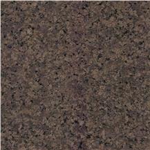 Adoni Brown Granite Brown Granite Stonecontact Com