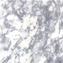 Aegean Dalmatian Marble