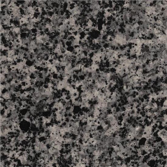 Alamoot Granite - Grey Granite - StoneContact.com
