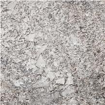 Antico Silver Granite