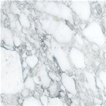 Arabescato Austral Marble
