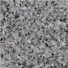 Bianco Gris Granite