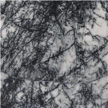 Bianco Pineta Marble