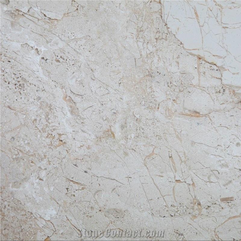 BRECCIA SARDA  Marble Wall /& Floor Tiles  Sample