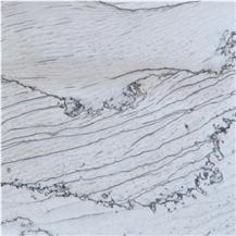 Calacatta Latte Quartzite