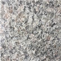 Calcedonia Granite
