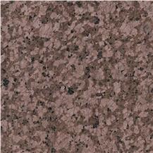 Classical Brown Granite