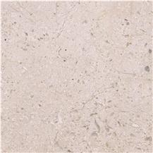 Dalle de Lignon Limestone
