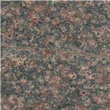 Desert Bloom Granite