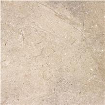 Dover Shell Limestone