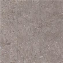 Eurasian Brown Marble