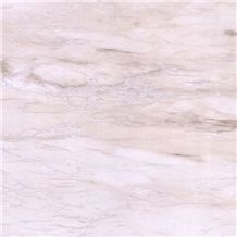 Eurasian White Wood Marble