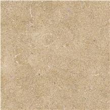 Golden Fossils Limestone