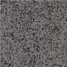 Jindian Sesame Grey Granite