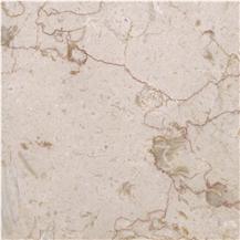 Jurassic Cream Marble