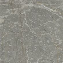 Milano Fossil Marble