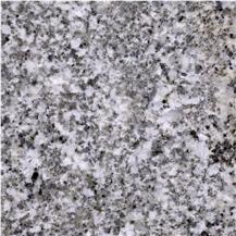 Oyster White S Granite