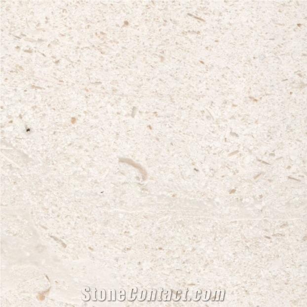 Paras Jogja Limestone White Limestone StoneContact com