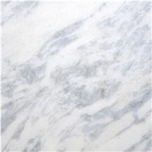 Platinum Blue Marble