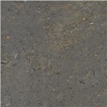 Platinum Gray Limestone