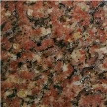 Rajasri Red Granite