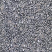 Sea Gray Green Granite