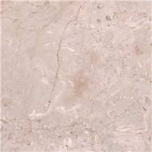 Seashell Marble