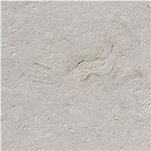 Shell Reef White Limestone